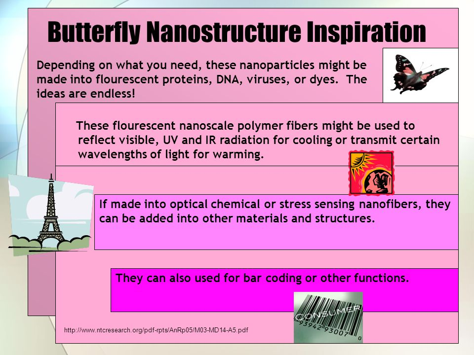 Butterfly Nanostructure Inspiration