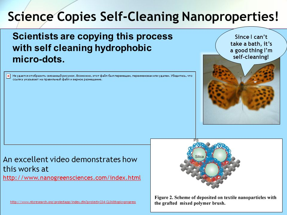 Science Copies Self-Cleaning Nanoproperties!