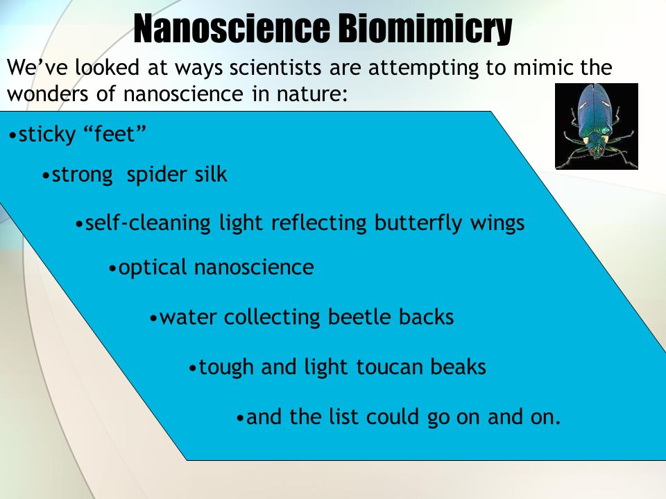 Nanoscience Biomimicry