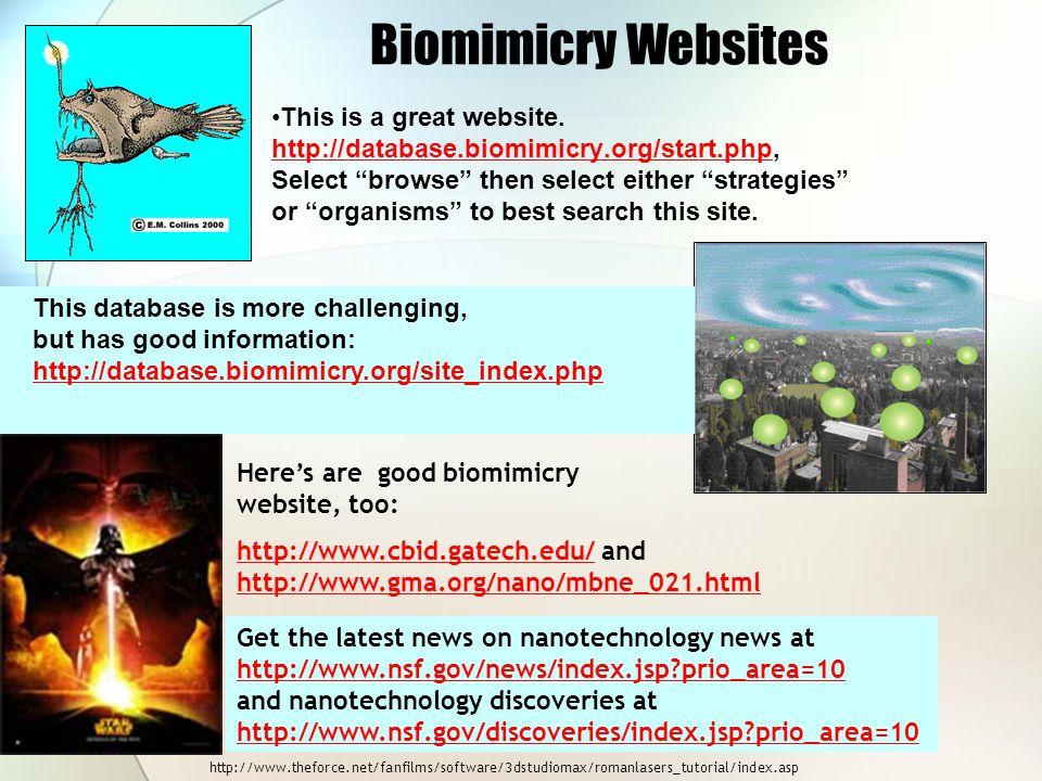 Biomimicry Websites