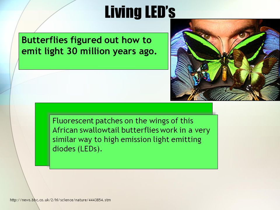 Living LED's Butterflies figured out how to emit light 30 million years ago.