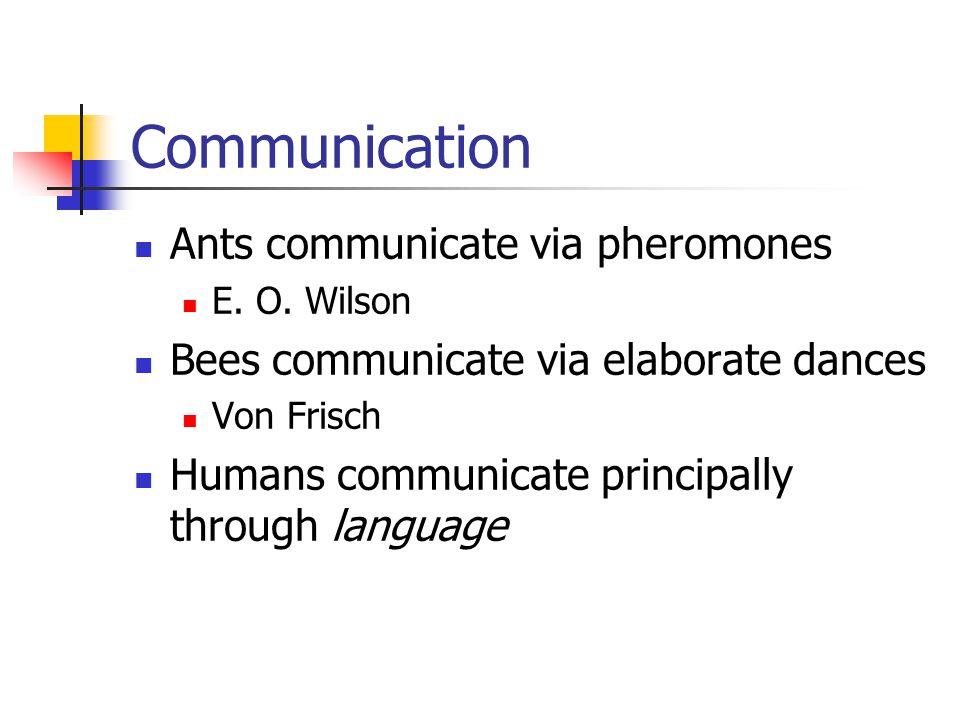 Communication Ants communicate via pheromones