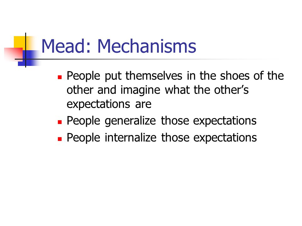Mead: Mechanisms People put themselves in the shoes of the other and imagine what the other's expectations are.