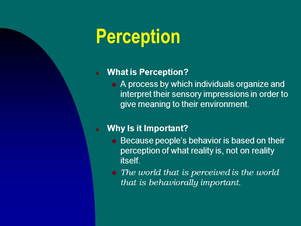 Perception What is Perception