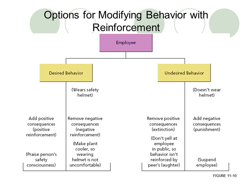 Options for Modifying Behavior with Reinforcement