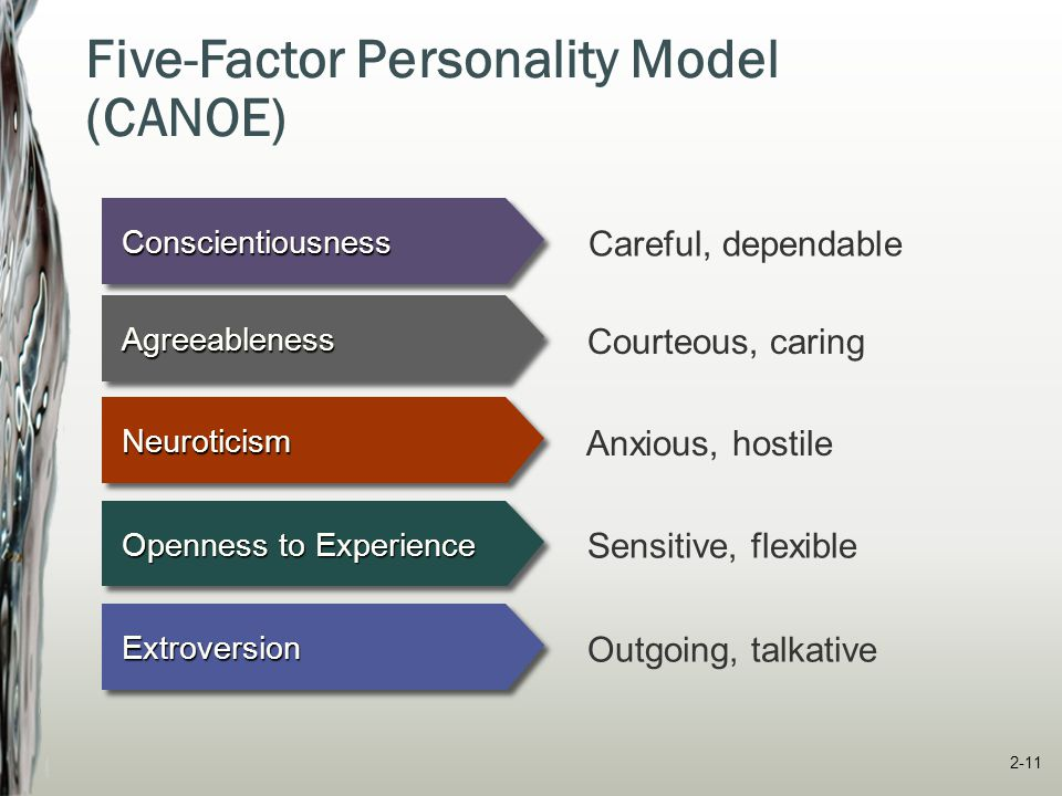 Five-Factor Personality Model (CANOE)