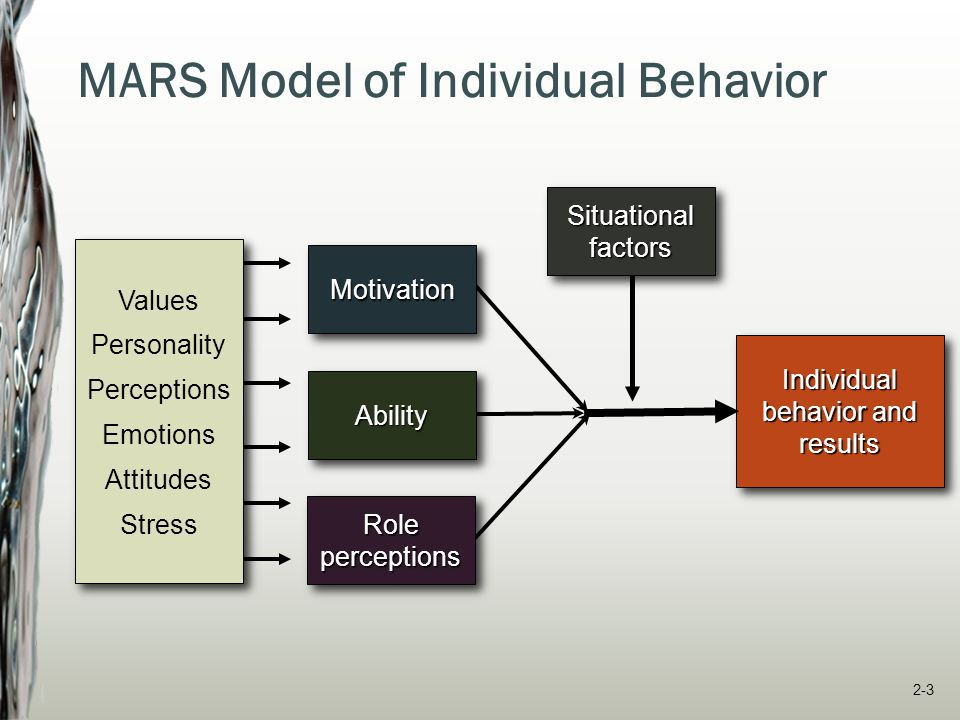 MARS Model of Individual Behavior