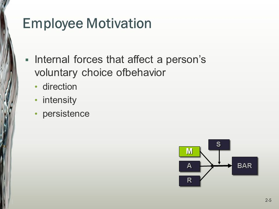 Employee Motivation Internal forces that affect a person's voluntary choice ofbehavior. direction.