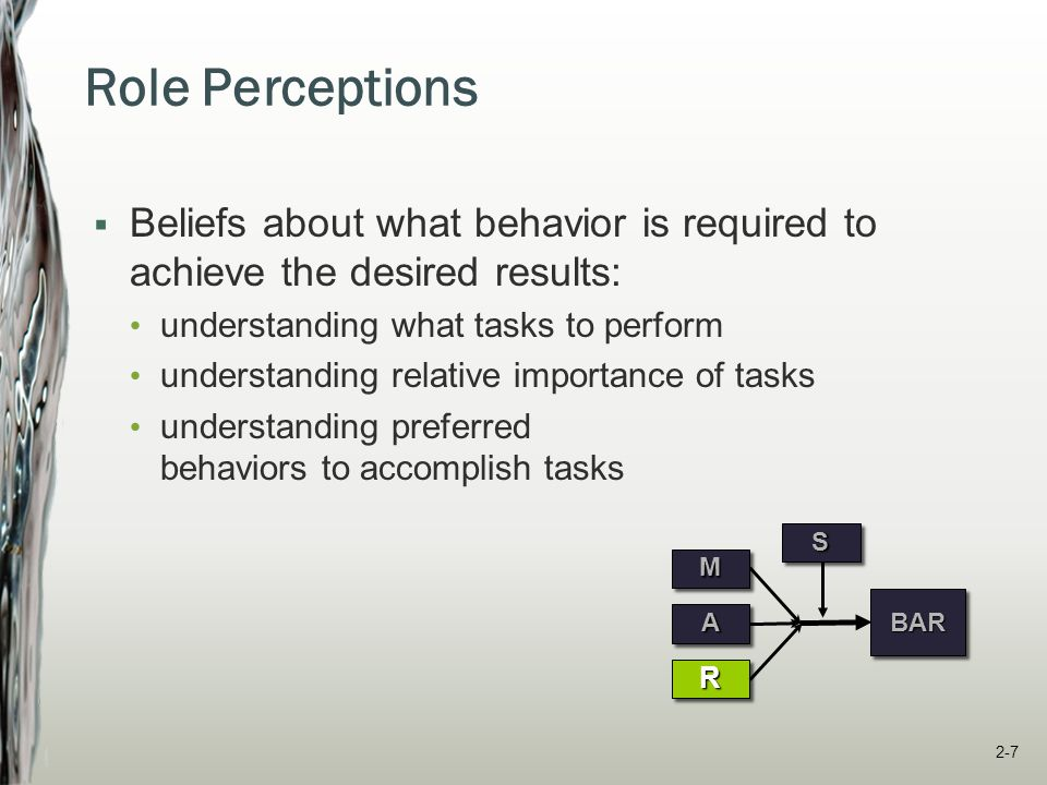 Role Perceptions Beliefs about what behavior is required to achieve the desired results: understanding what tasks to perform.