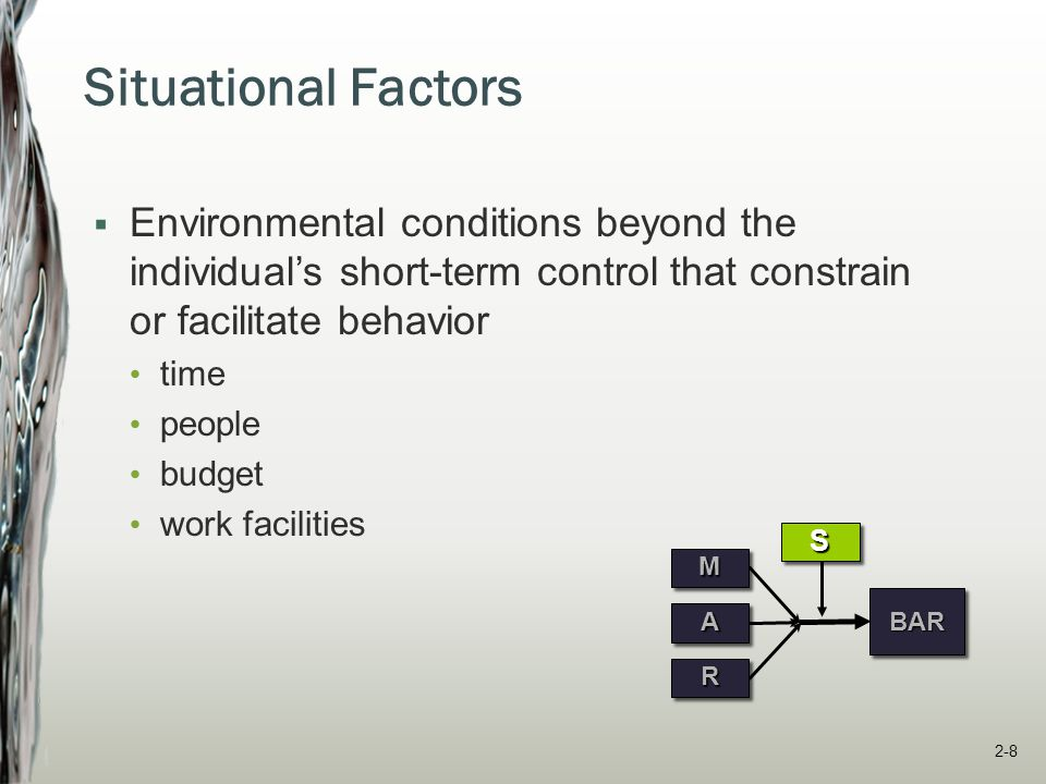 Situational Factors Environmental conditions beyond the individual's short-term control that constrain or facilitate behavior.