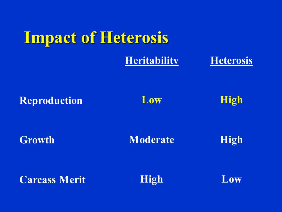Impact of Heterosis Heritability Low Moderate High Heterosis High Low