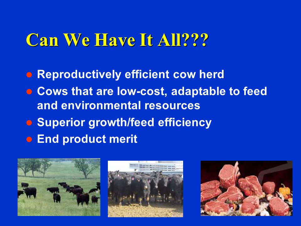 Can We Have It All Reproductively efficient cow herd