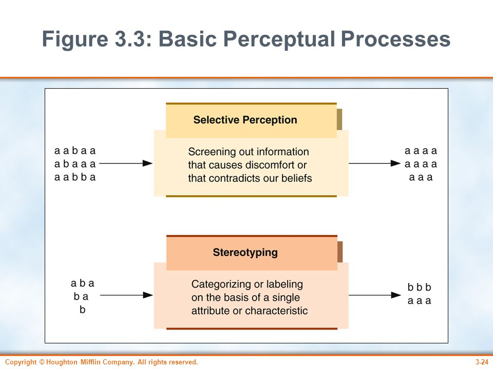 Figure 3.3: Basic Perceptual Processes