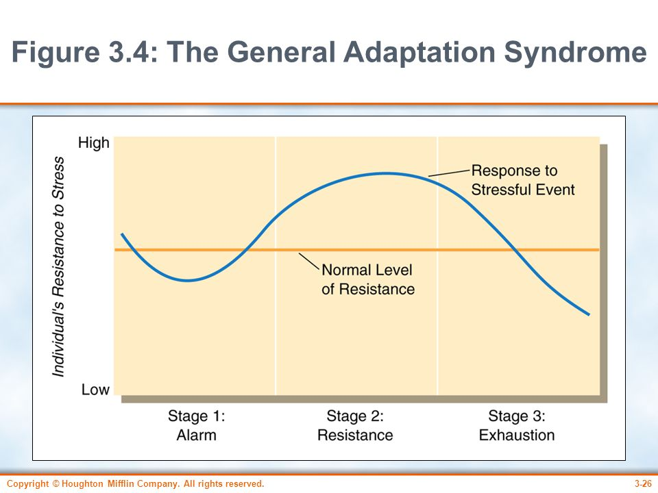 Figure 3.4: The General Adaptation Syndrome