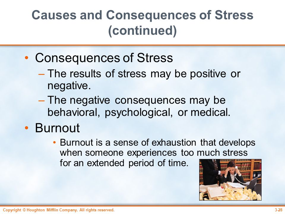 Causes and Consequences of Stress (continued)