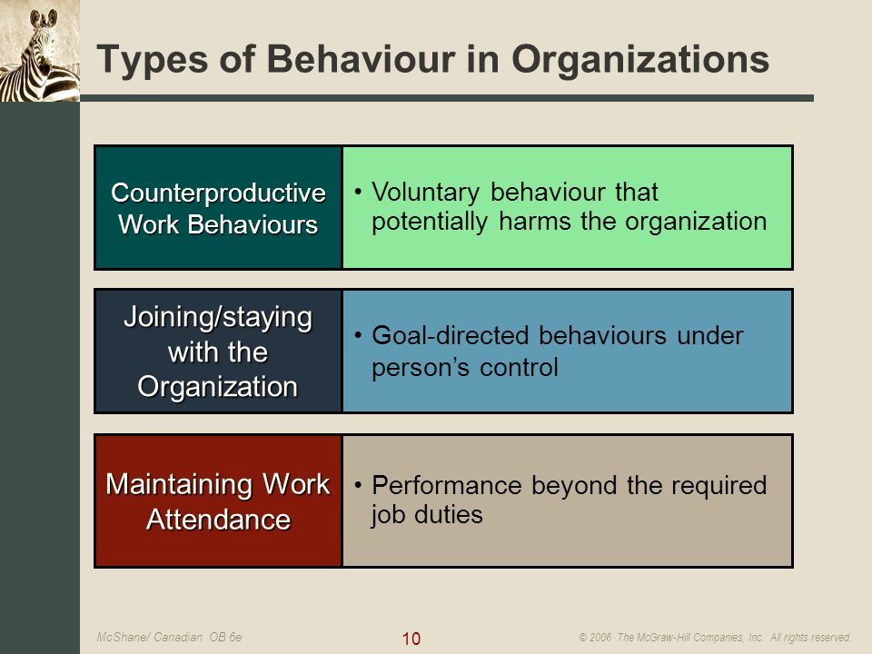 organizational behavior personality and values