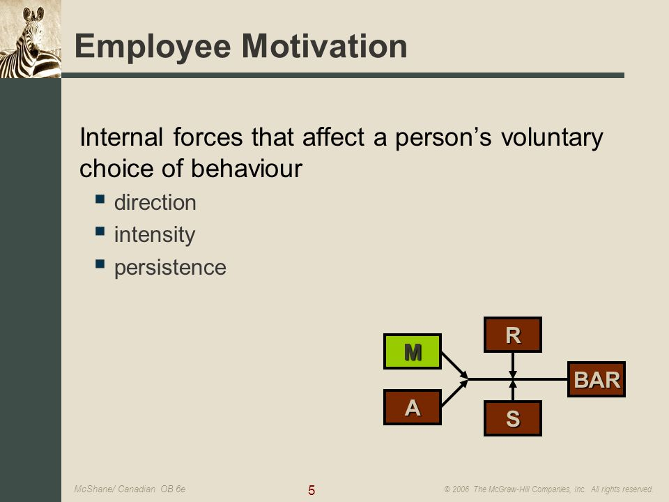 Motivation individual behavior