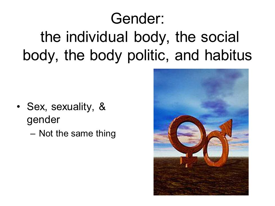 Gender: the individual body, the social body, the body politic, and habitus