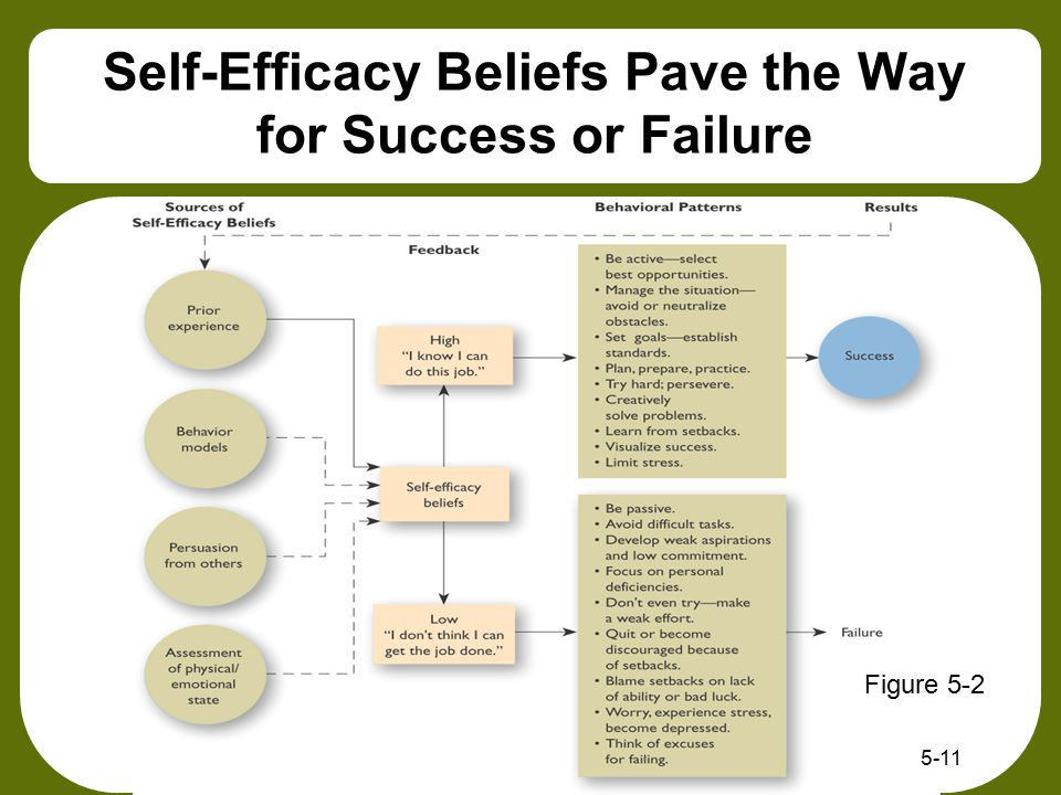 Self-Efficacy Beliefs Pave the Way for Success or Failure