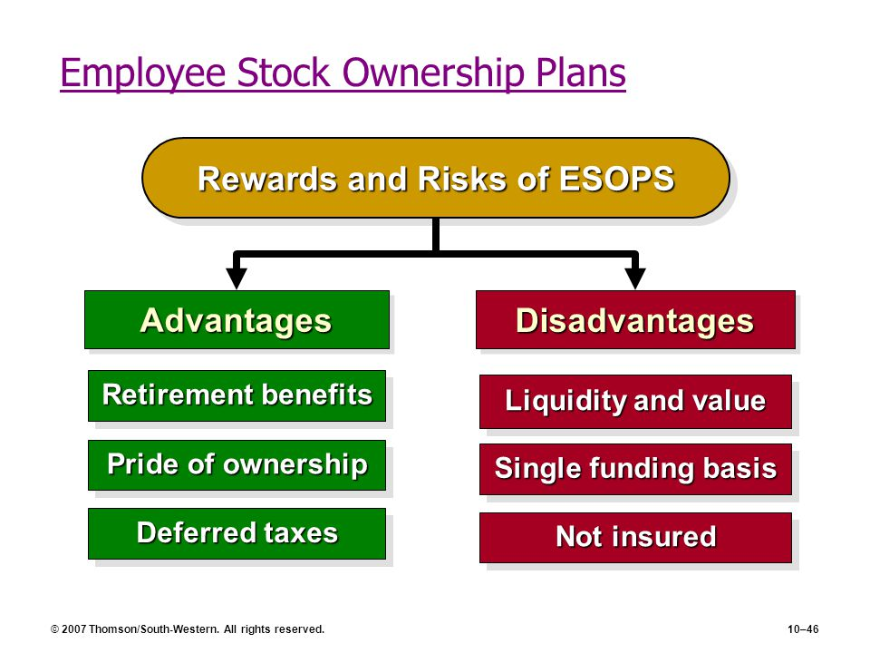 Employee Stock Ownership Plans