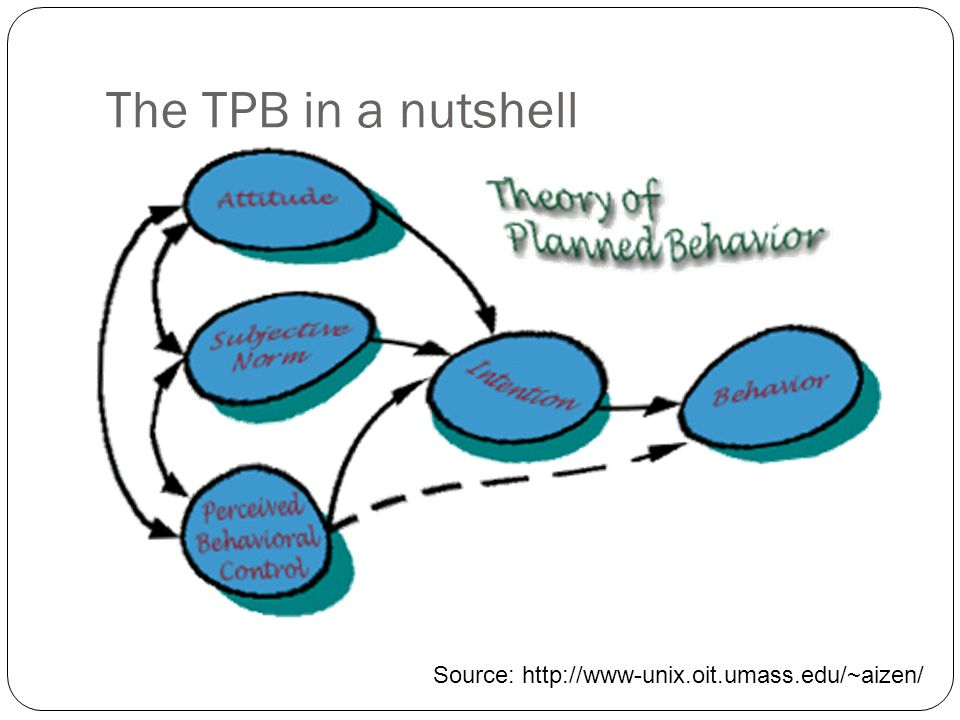 The TPB in a nutshell Source: http://www-unix.oit.umass.edu/~aizen/