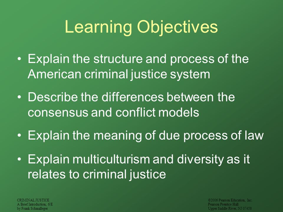 Learning Objectives Explain the structure and process of the American criminal justice system.