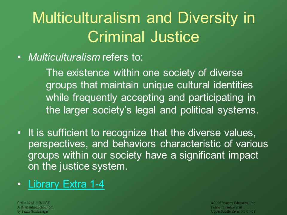 Multiculturalism and Diversity in Criminal Justice