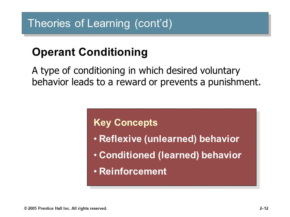 Theories of Learning (cont'd)