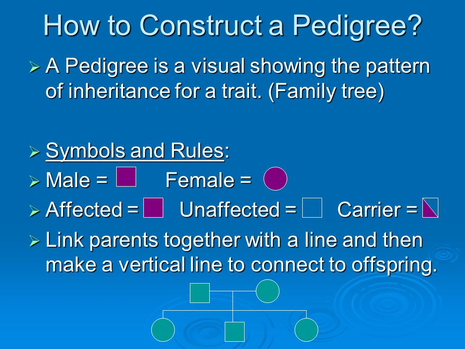 How to Construct a Pedigree