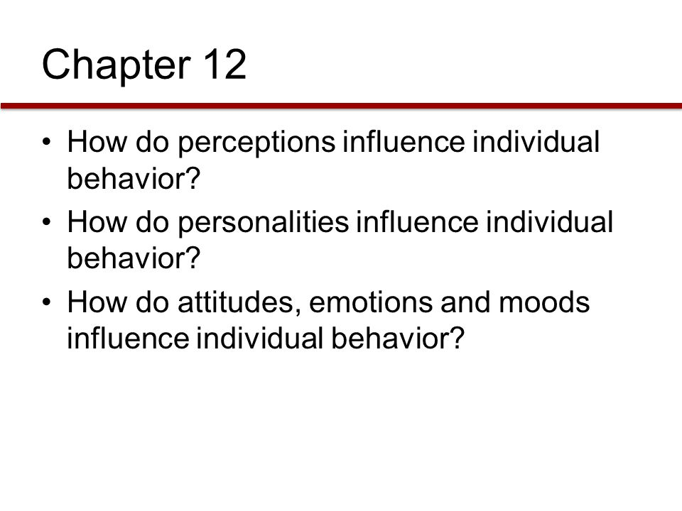 Chapter 12 How do perceptions influence individual behavior