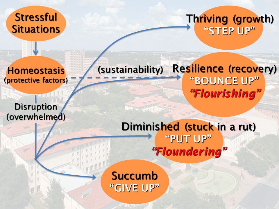 Resilience (recovery) Flourishing