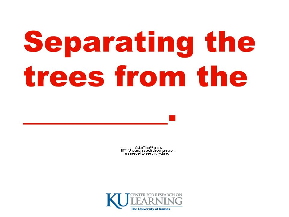 Separating the trees from the __________.