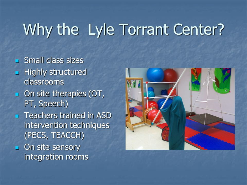 Why the Lyle Torrant Center
