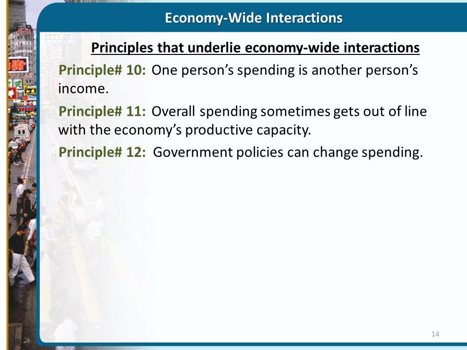 Economy-Wide Interactions