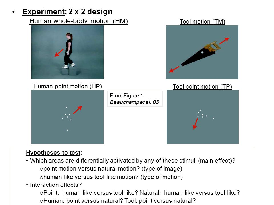 Experiment: 2 x 2 design Human whole-body motion (HM) Tool motion (TM)