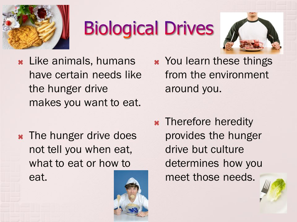Biological Drives Like animals, humans have certain needs like the hunger drive makes you want to eat.