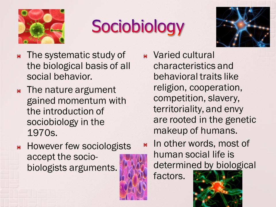 Sociobiology The systematic study of the biological basis of all social behavior.