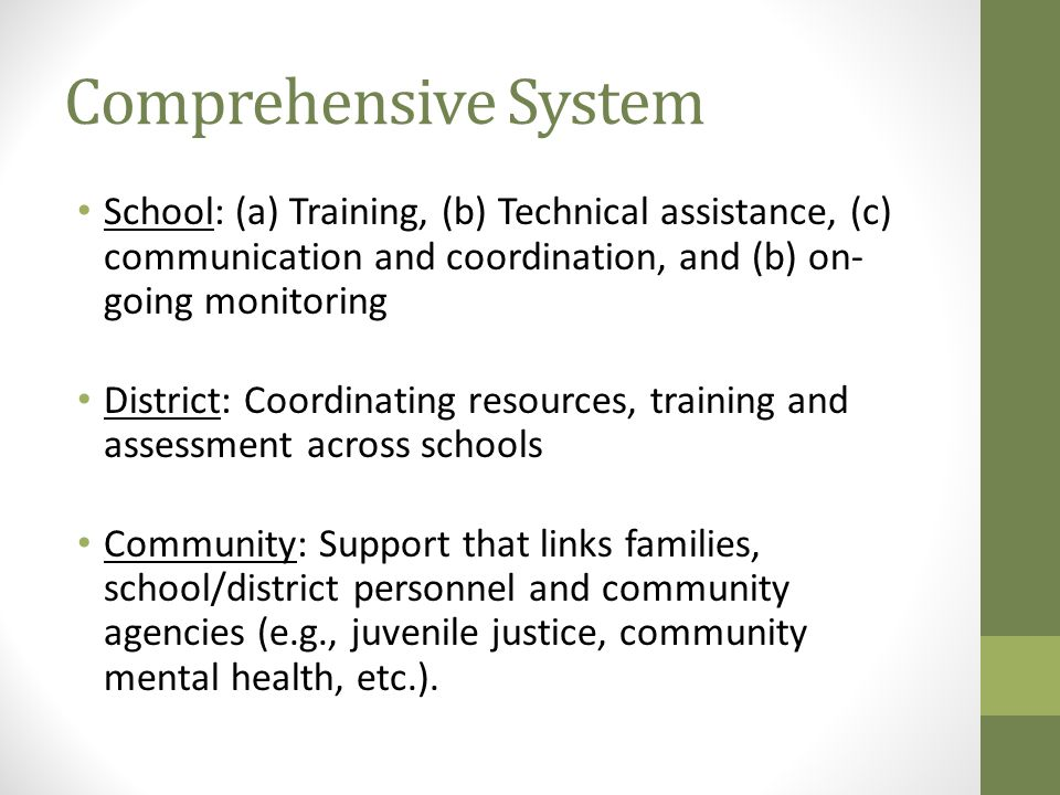 Comprehensive System School: (a) Training, (b) Technical assistance, (c) communication and coordination, and (b) on-going monitoring.