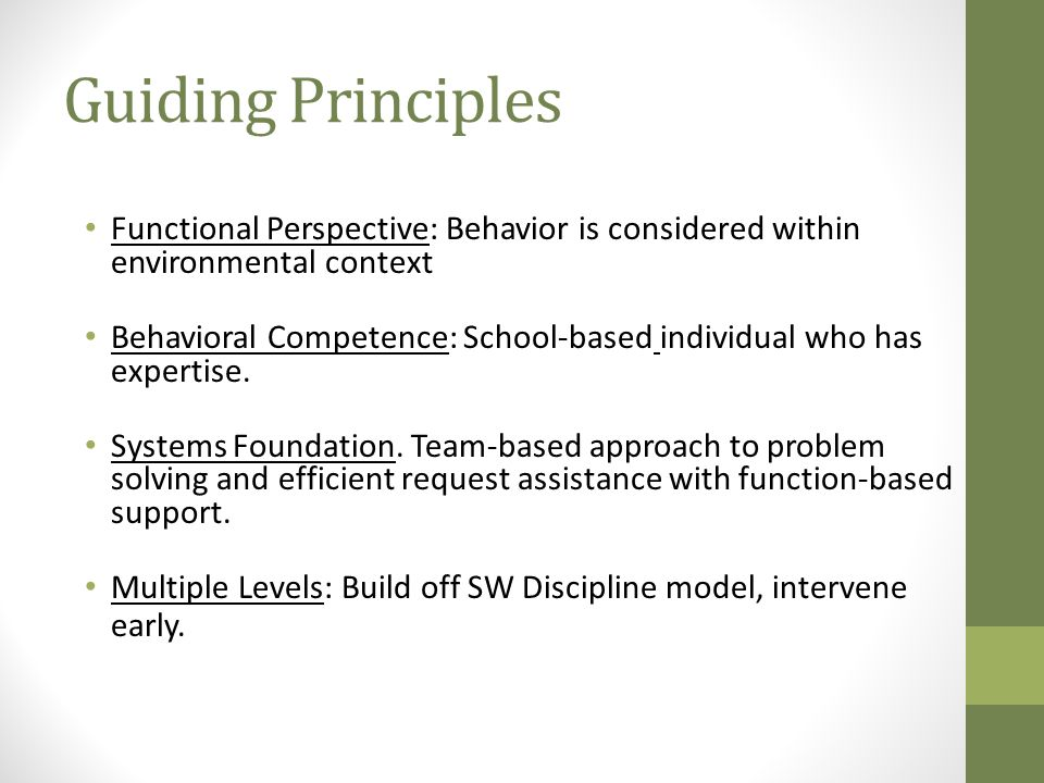 Guiding Principles Functional Perspective: Behavior is considered within environmental context.
