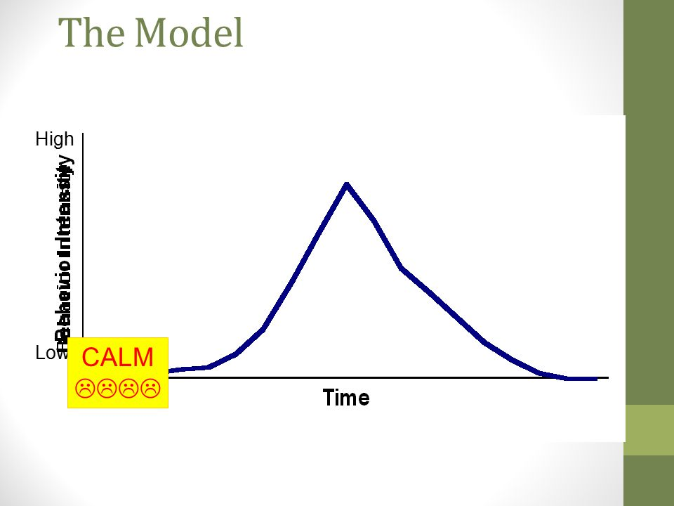 The Model High Low CALM 