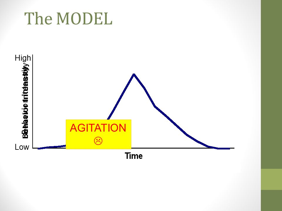 The MODEL High AGITATION  Low