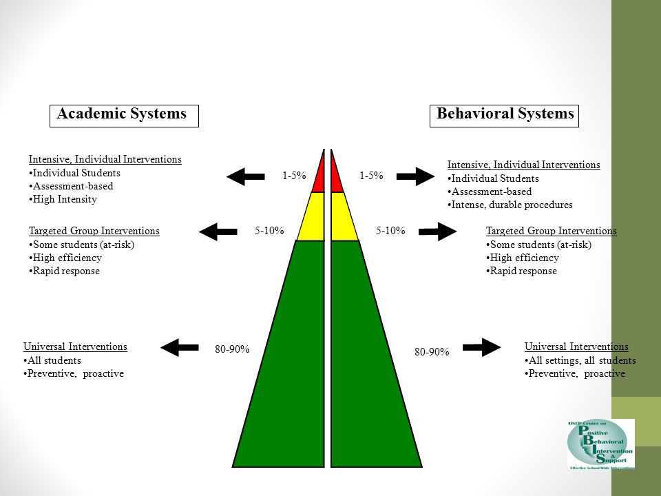 Academic Systems Behavioral Systems