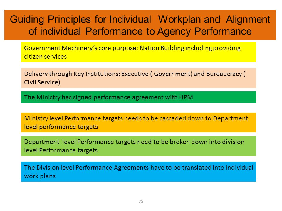 Guiding Principles for Individual Workplan and Alignment of individual Performance to Agency Performance