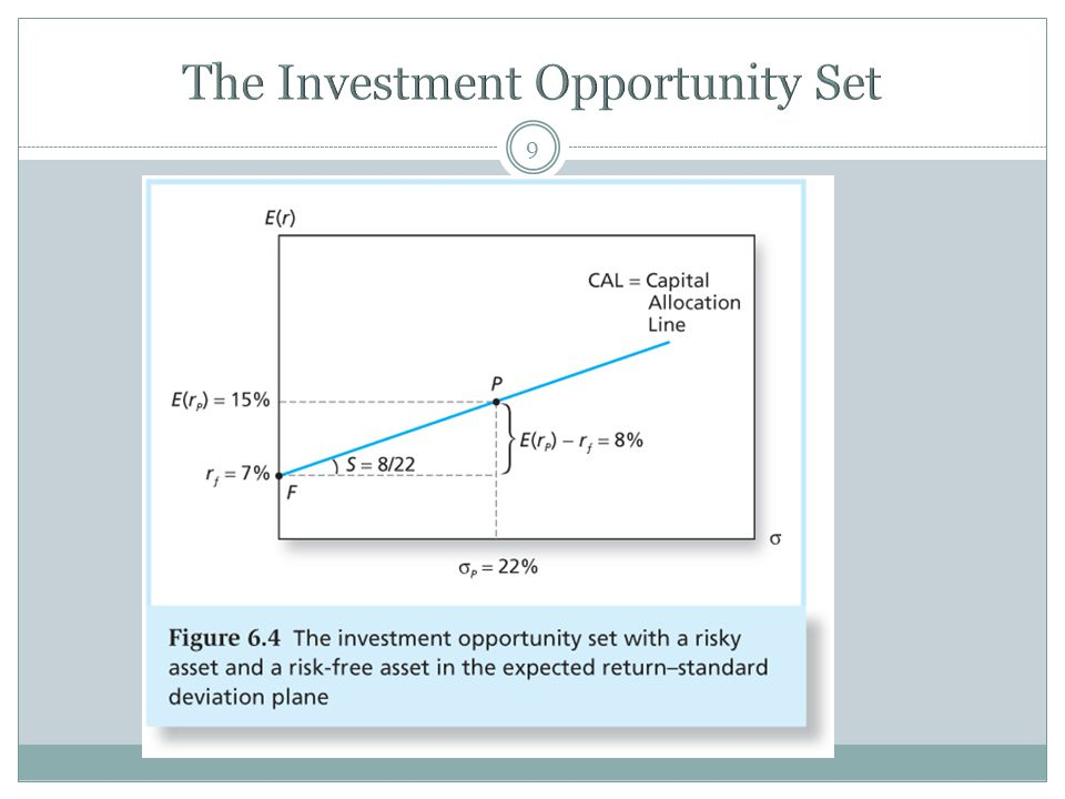 The Investment Opportunity Set