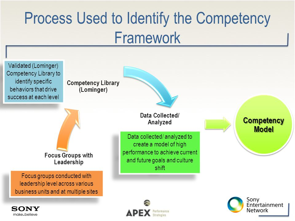 Process Used to Identify the Competency Framework