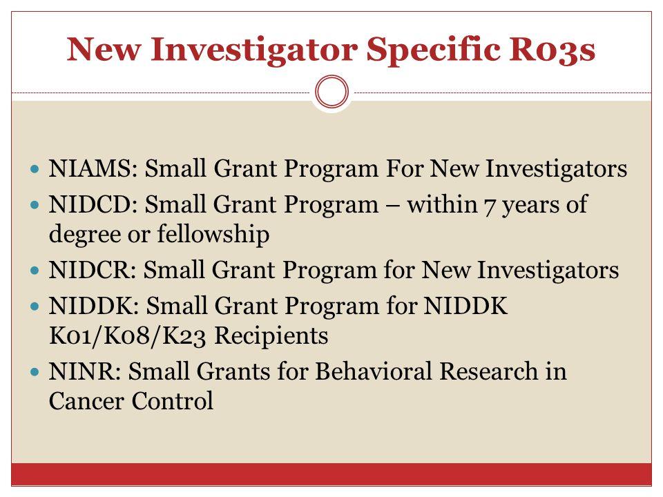 New Investigator Specific R03s
