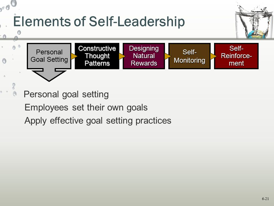 Elements of Self-Leadership