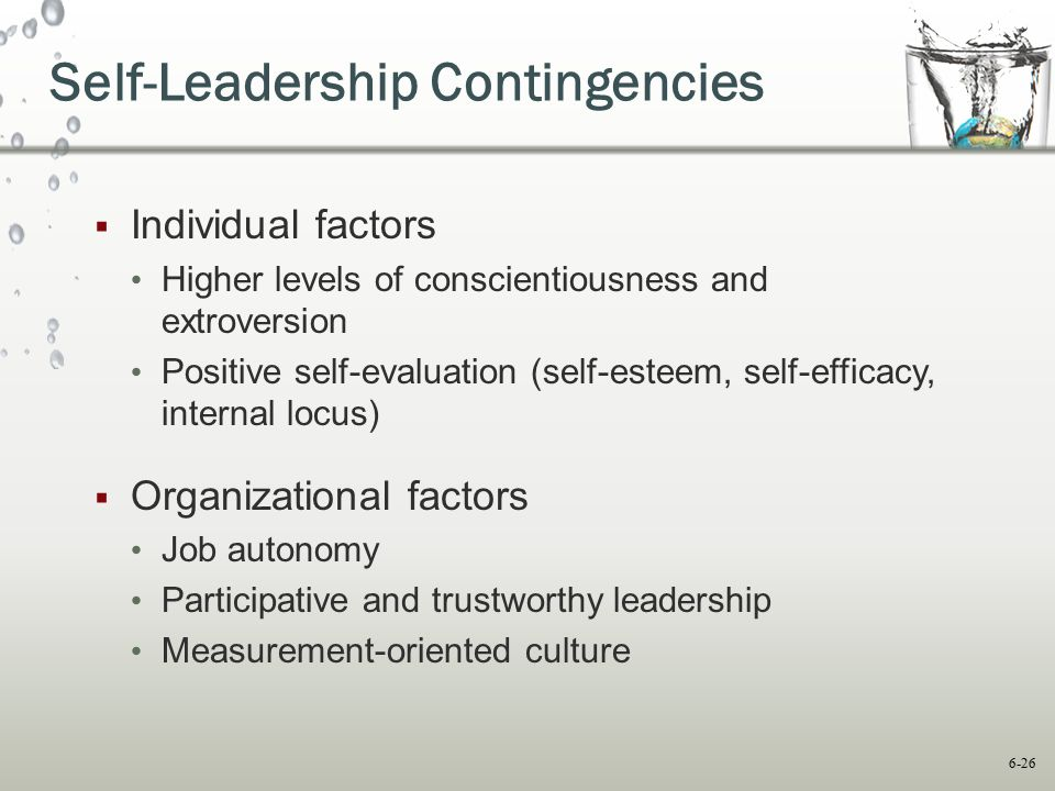 Self-Leadership Contingencies