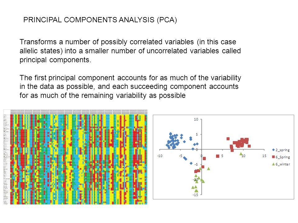 PRINCIPAL COMPONENTS ANALYSIS (PCA)