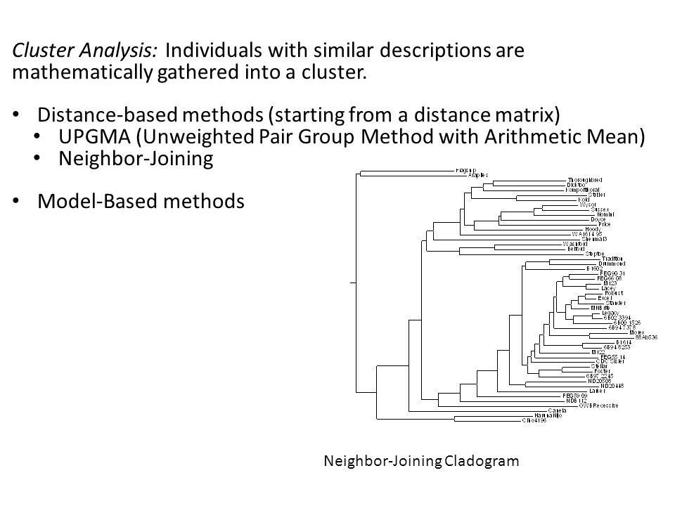 Distance-based methods (starting from a distance matrix)